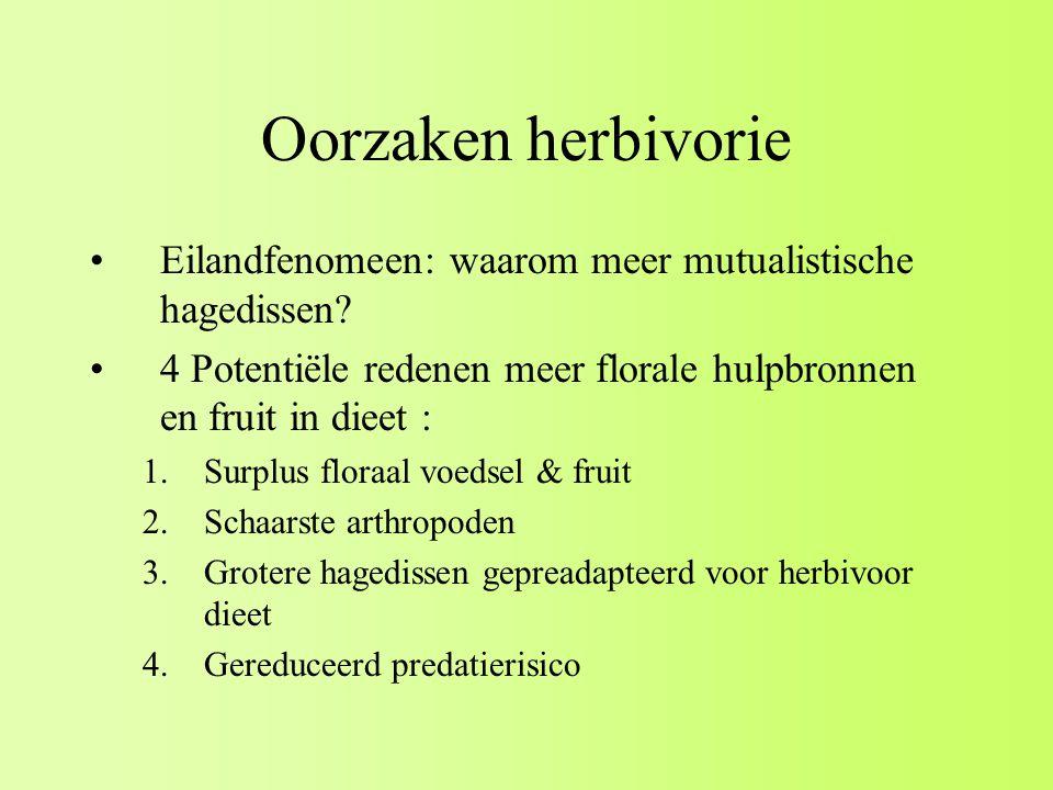 Oorzaken herbivorie Eilandfenomeen: waarom meer mutualistische hagedissen 4 Potentiële redenen meer florale hulpbronnen en fruit in dieet :