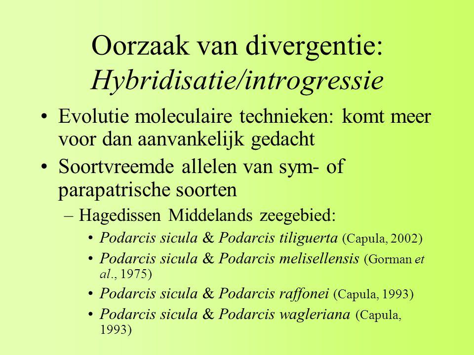 Oorzaak van divergentie: Hybridisatie/introgressie