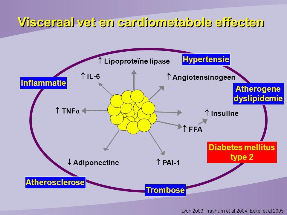 Atherogene dyslipidemie Diabetes mellitus type 2