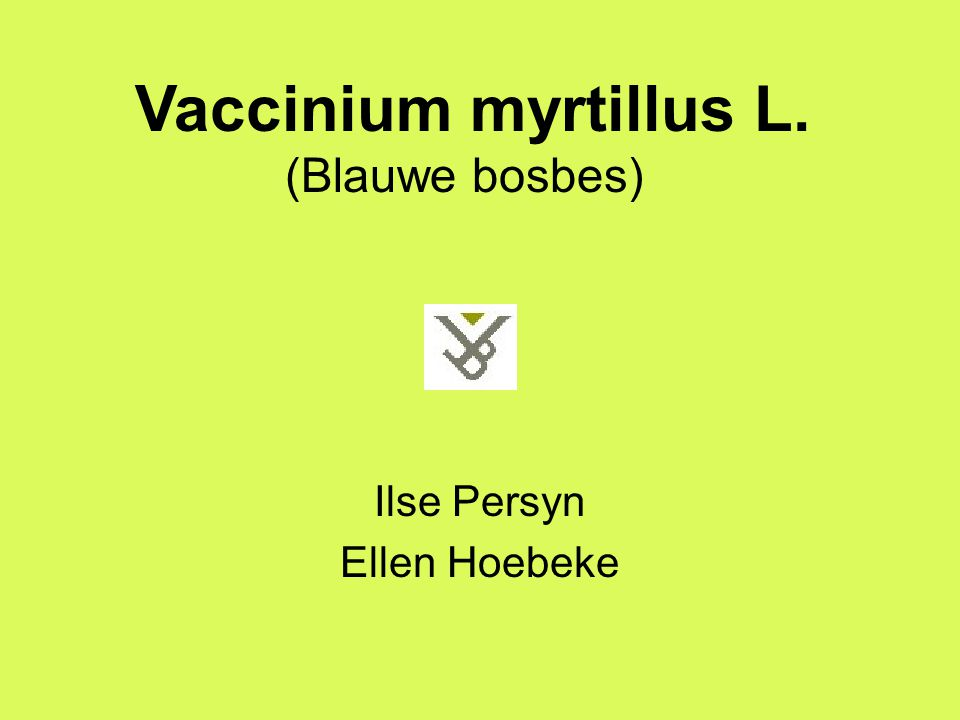 Ilse Persyn Ellen Hoebeke