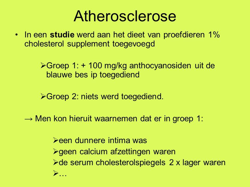Atherosclerose In een studie werd aan het dieet van proefdieren 1% cholesterol supplement toegevoegd.