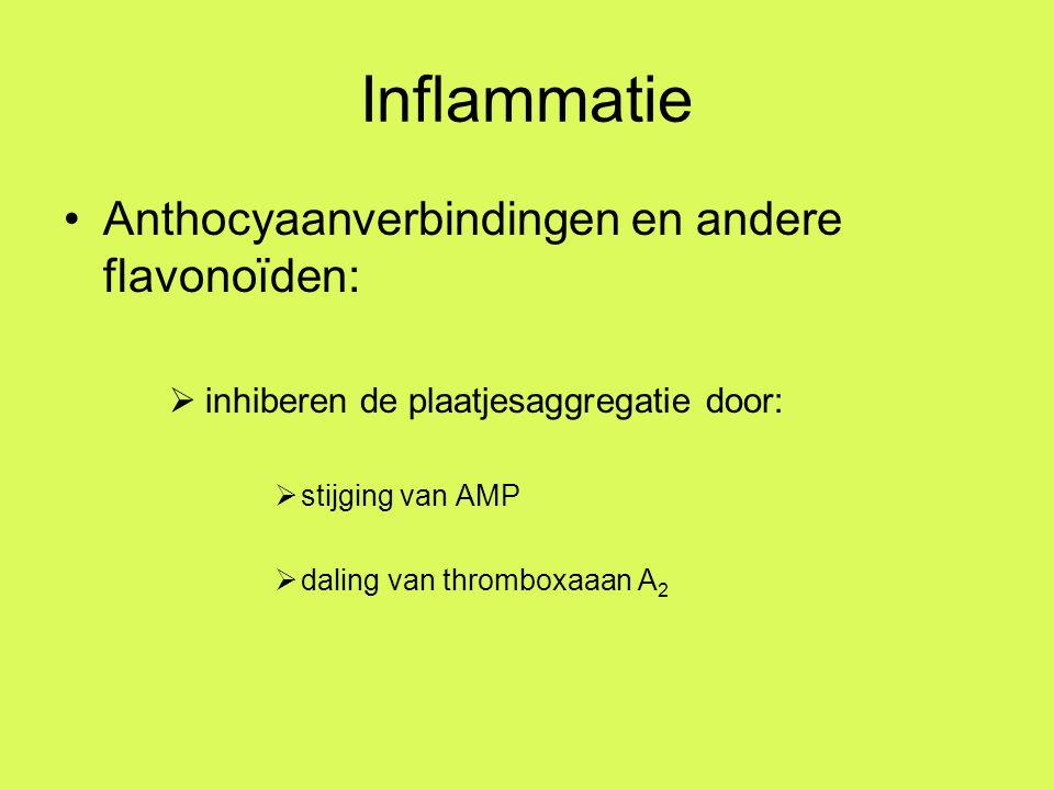 Inflammatie Anthocyaanverbindingen en andere flavonoïden: