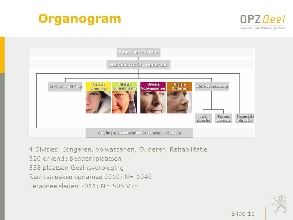 Organogram 4 Divisies: Jongeren, Volwassenen, Ouderen, Rehabilitatie