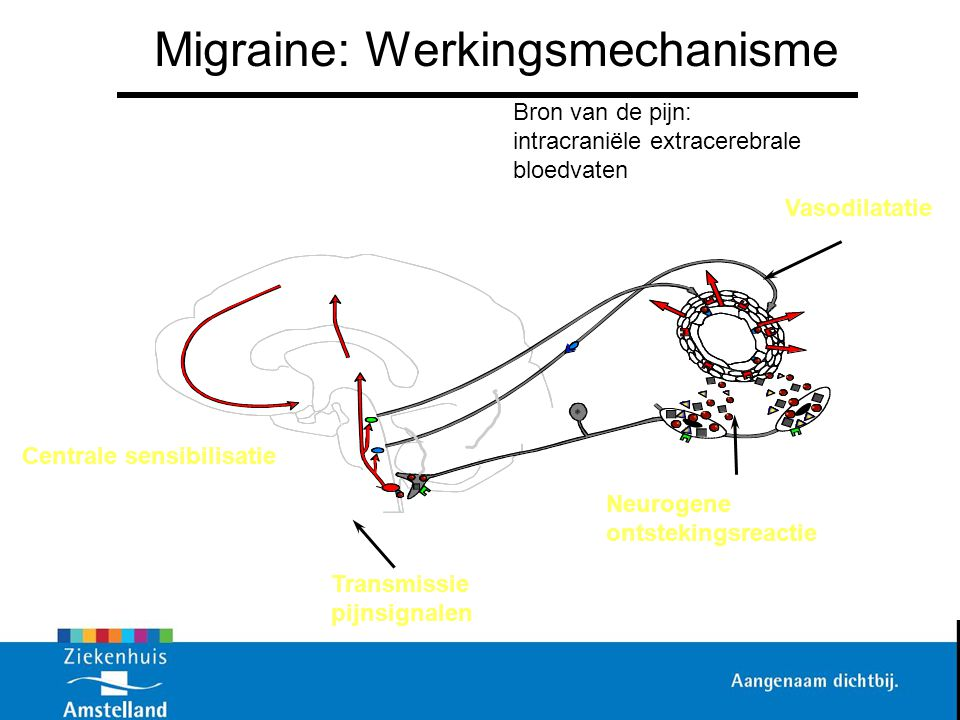 Migraine: Werkingsmechanisme
