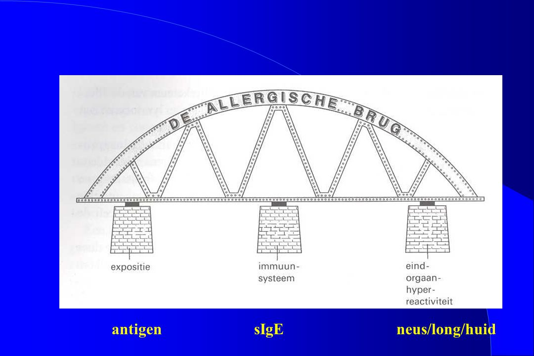 antigen sIgE neus/long/huid