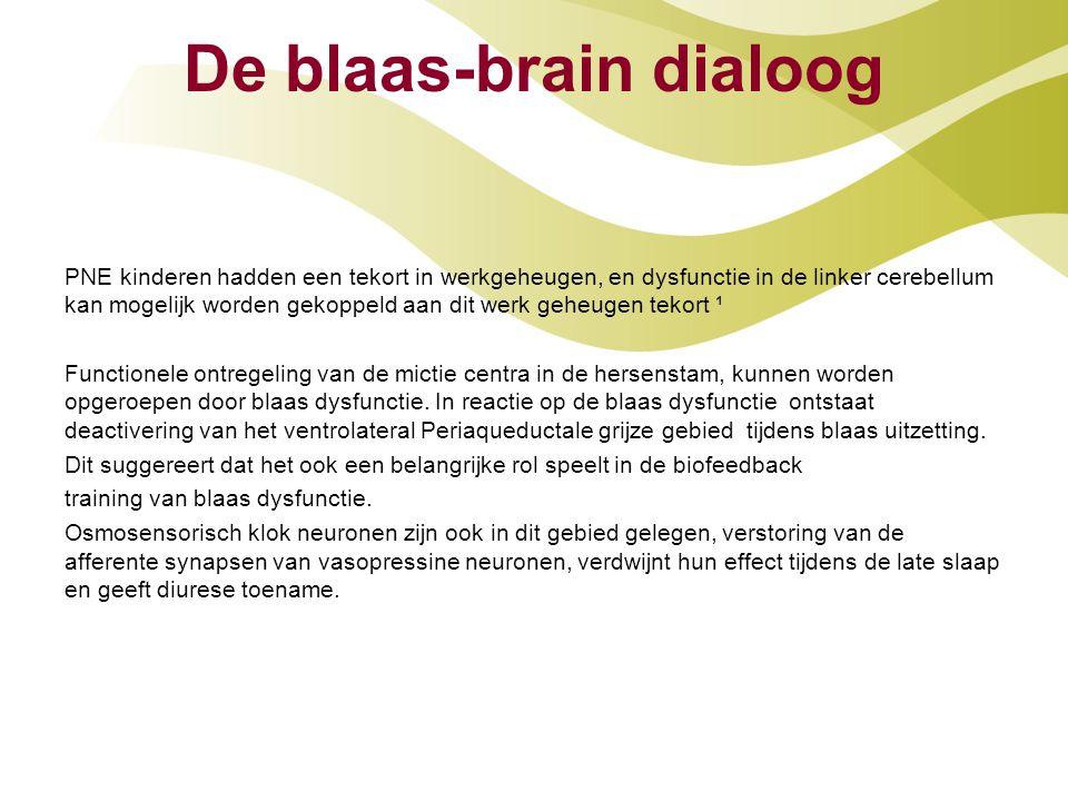 De blaas-brain dialoog