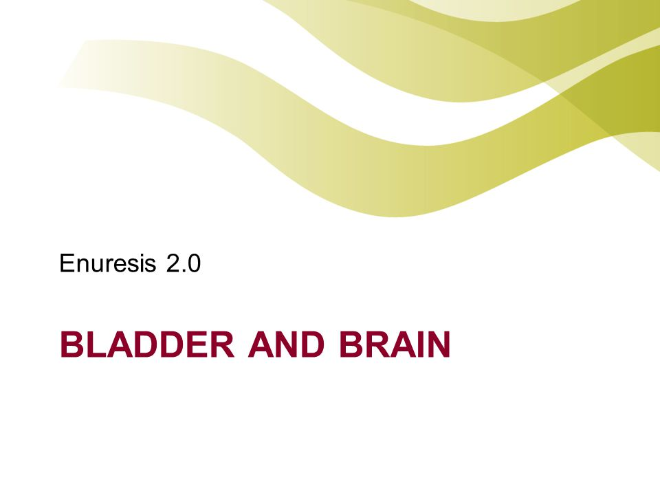 Enuresis 2.0 BLADDER AND BRAIN