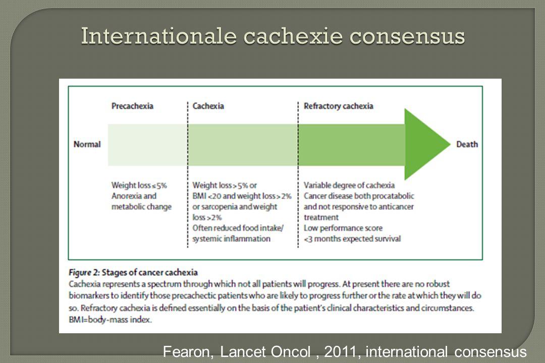 Internationale cachexie consensus