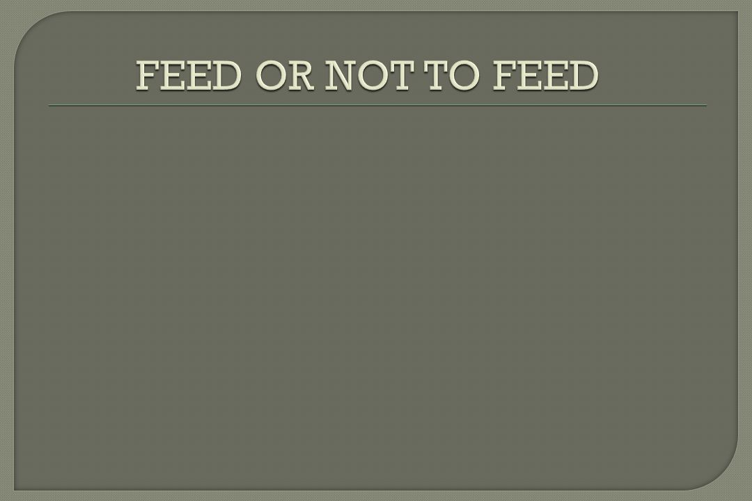 FEED OR NOT TO FEED