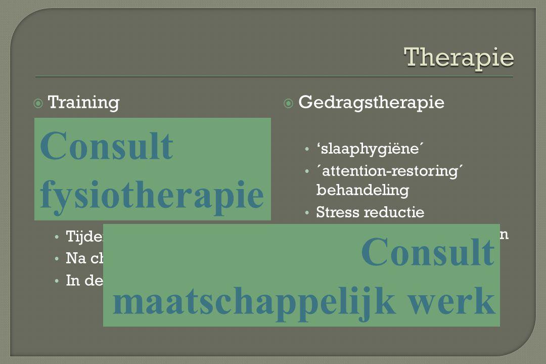 Consult fysiotherapie Consult maatschappelijk werk Therapie Training