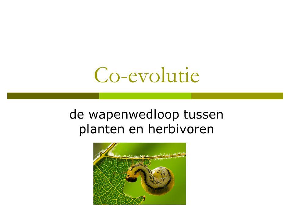 de wapenwedloop tussen planten en herbivoren