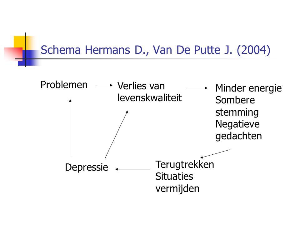 Schema Hermans D., Van De Putte J. (2004)