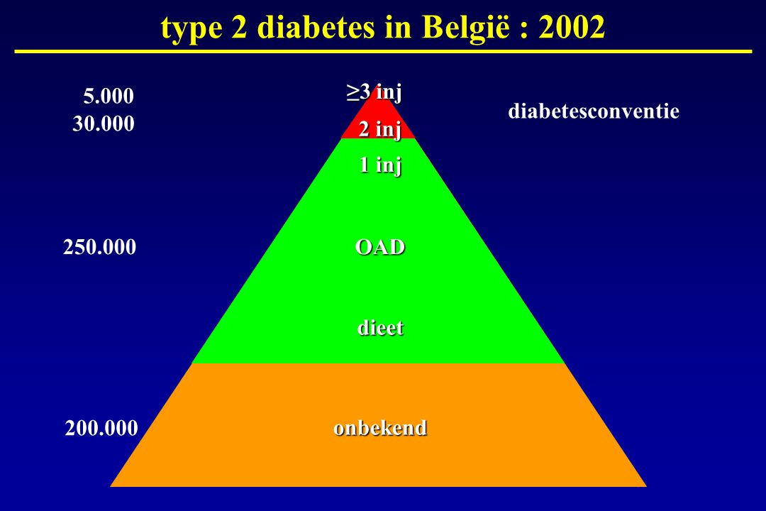 type 2 diabetes in België : 2002