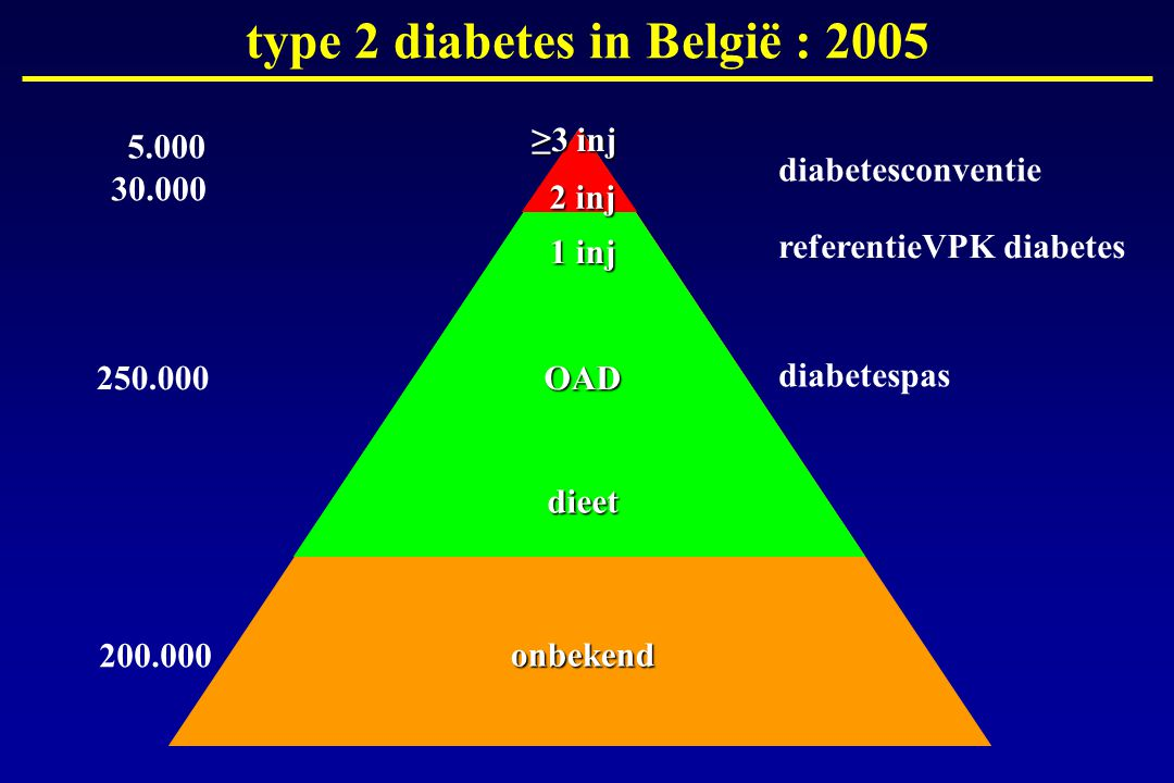 type 2 diabetes in België : 2005