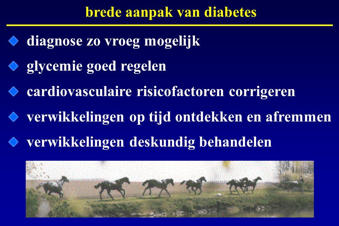 brede aanpak van diabetes