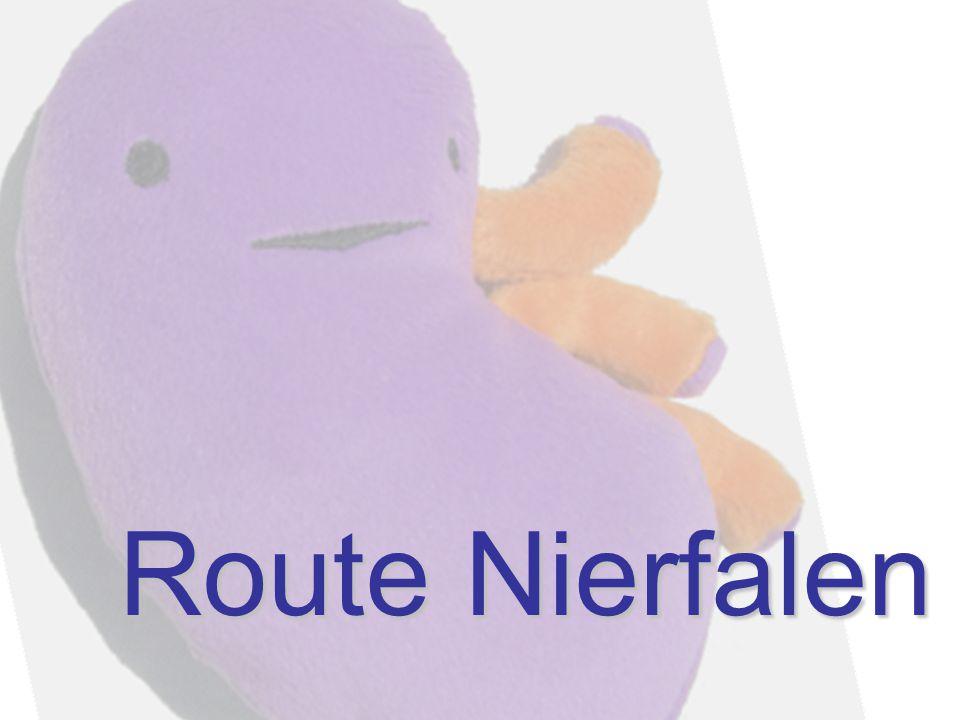 Route Nierfalen