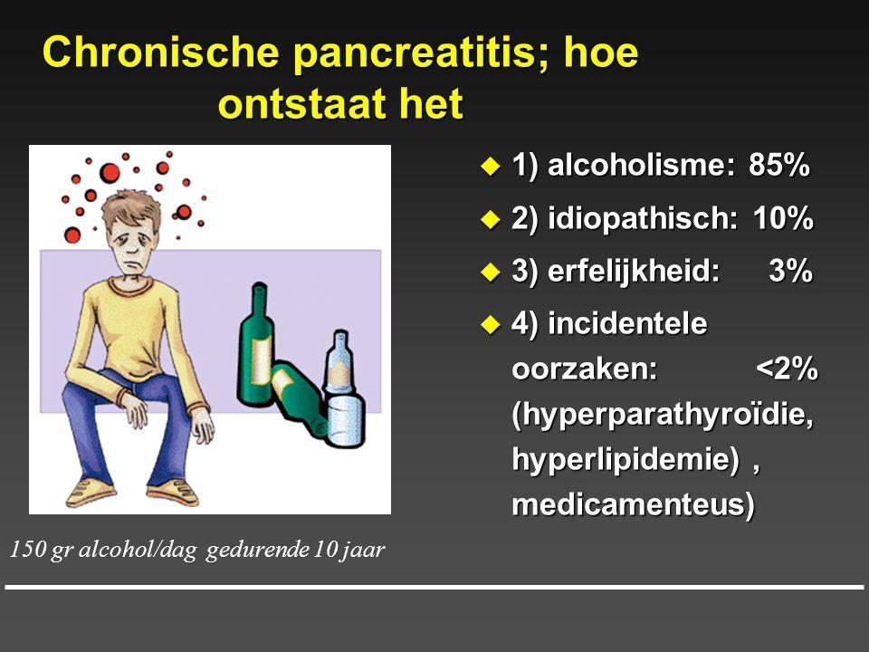 Chronische pancreatitis; hoe ontstaat het