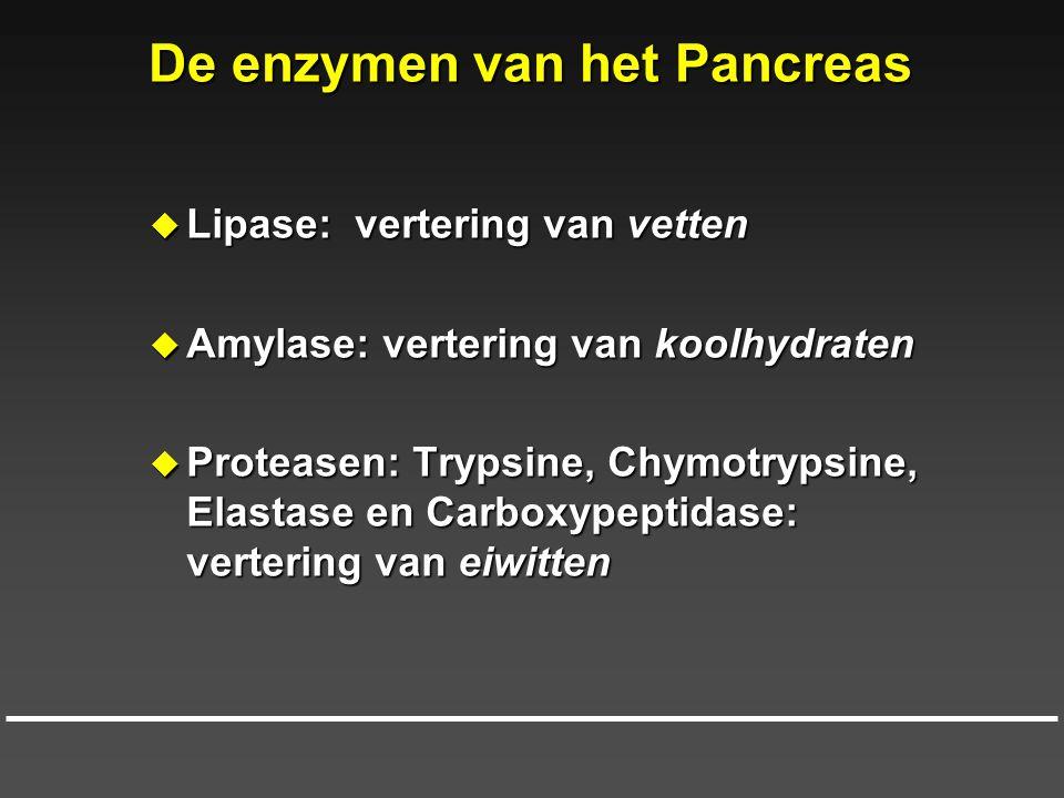De enzymen van het Pancreas