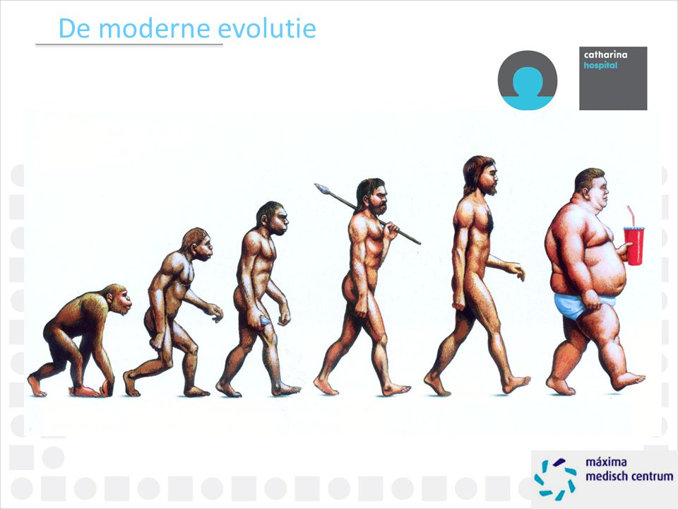 De moderne evolutie