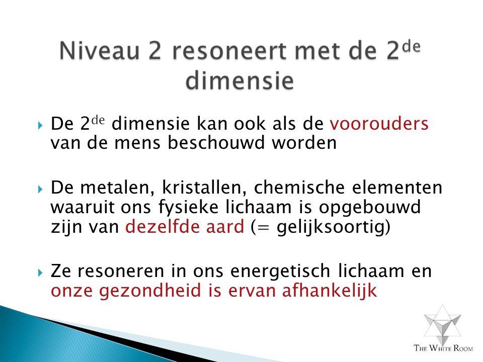 De 2de dimensie kan ook als de voorouders van de mens beschouwd worden