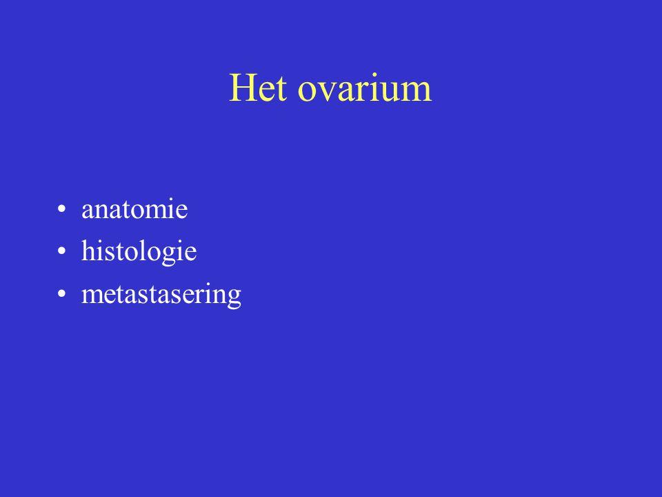Het ovarium anatomie histologie metastasering