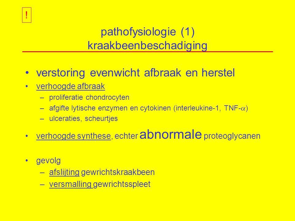 pathofysiologie (1) kraakbeenbeschadiging
