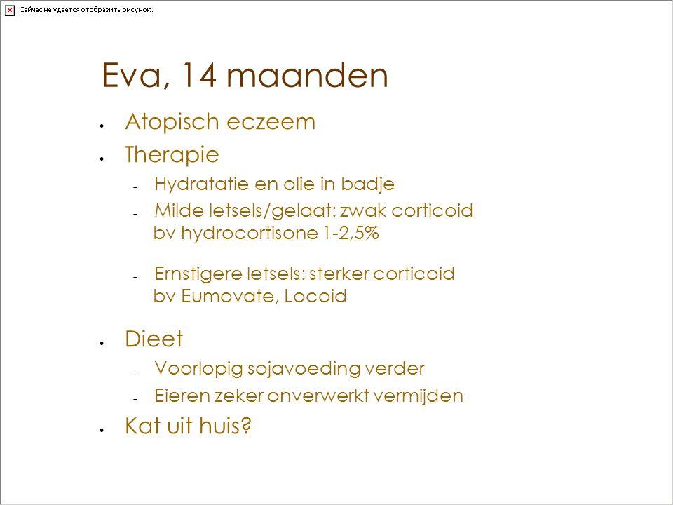 Eva, 14 maanden Atopisch eczeem Therapie Dieet Kat uit huis