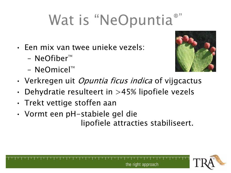 Wat is NeOpuntia® Een mix van twee unieke vezels: NeOfiber™