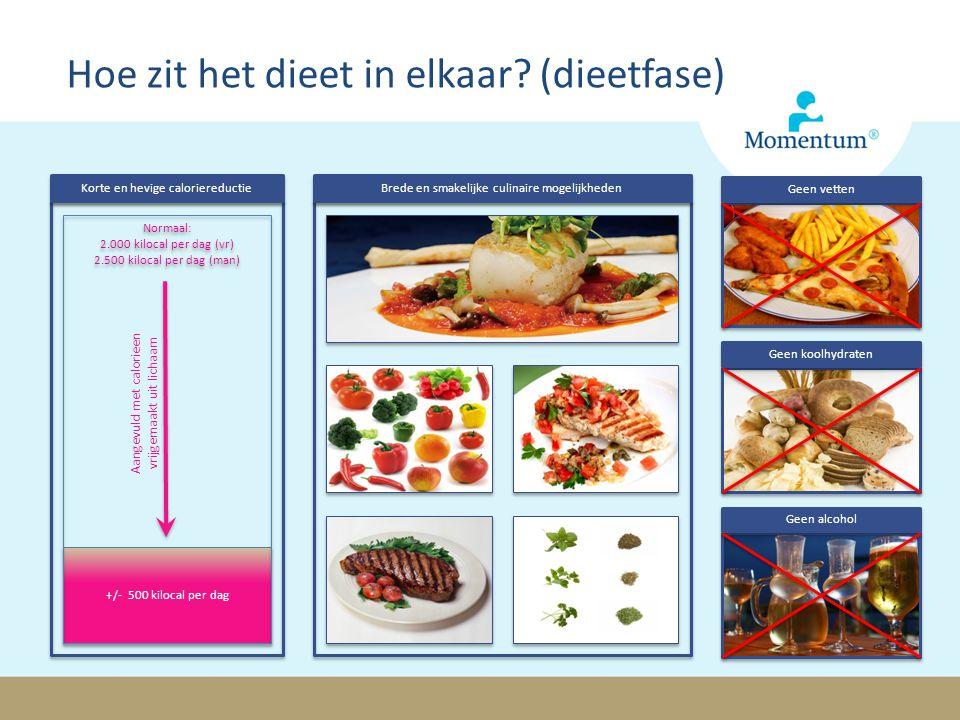 Hoe zit het dieet in elkaar (dieetfase)