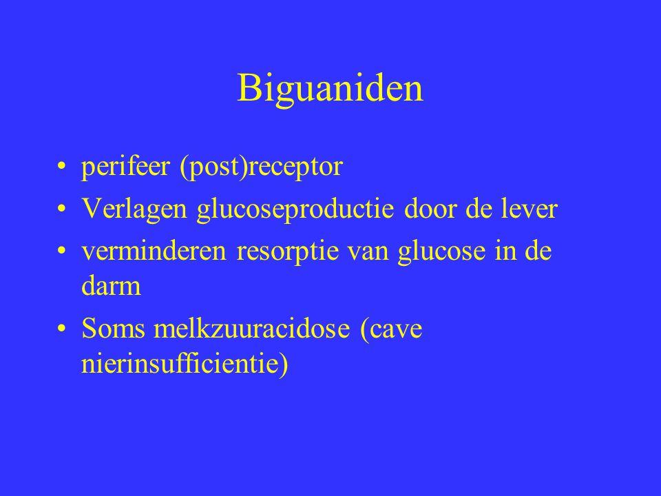 Biguaniden perifeer (post)receptor