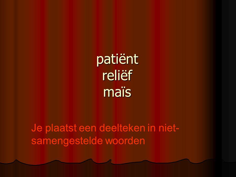 patiënt reliëf maïs Je plaatst een deelteken in niet-samengestelde woorden