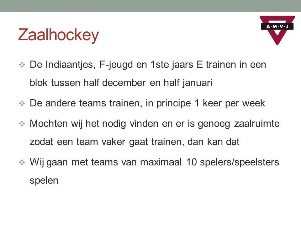 Zaalhockey De Indiaantjes, F-jeugd en 1ste jaars E trainen in een blok tussen half december en half januari.