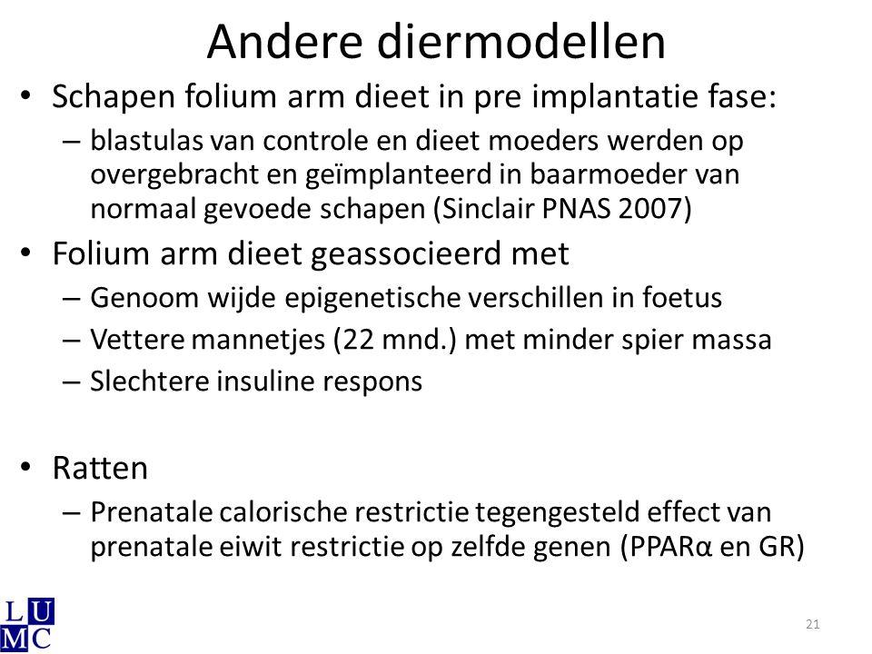 Andere diermodellen Schapen folium arm dieet in pre implantatie fase: