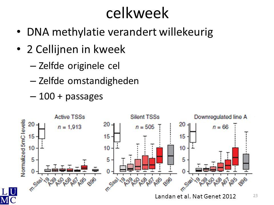 celkweek DNA methylatie verandert willekeurig 2 Cellijnen in kweek