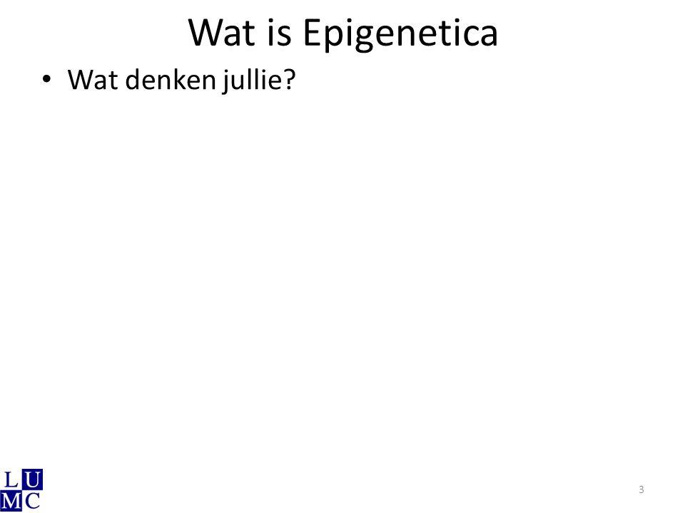 Wat is Epigenetica Wat denken jullie