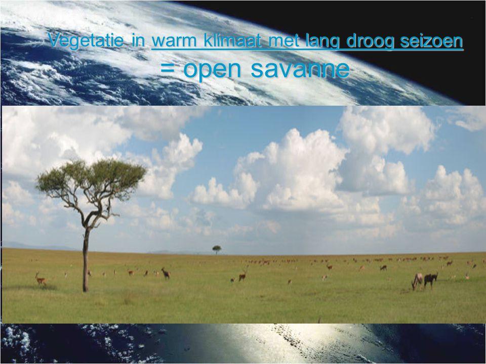 Vegetatie in warm klimaat met lang droog seizoen = open savanne