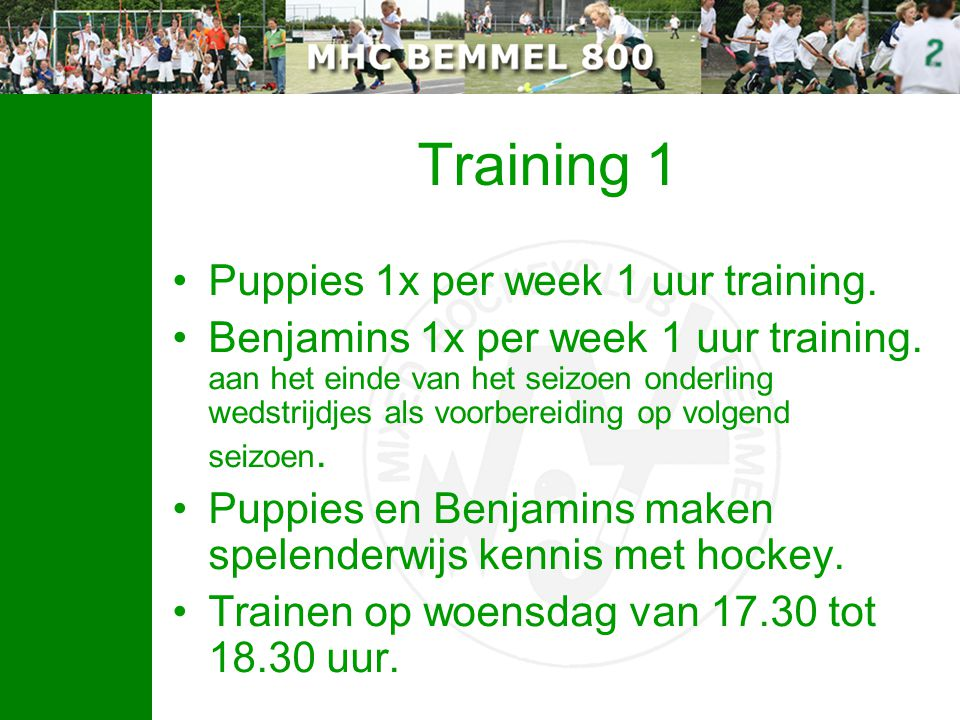 Training 1 Puppies 1x per week 1 uur training.