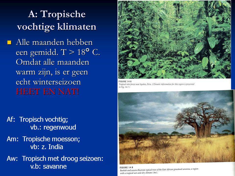 A: Tropische vochtige klimaten