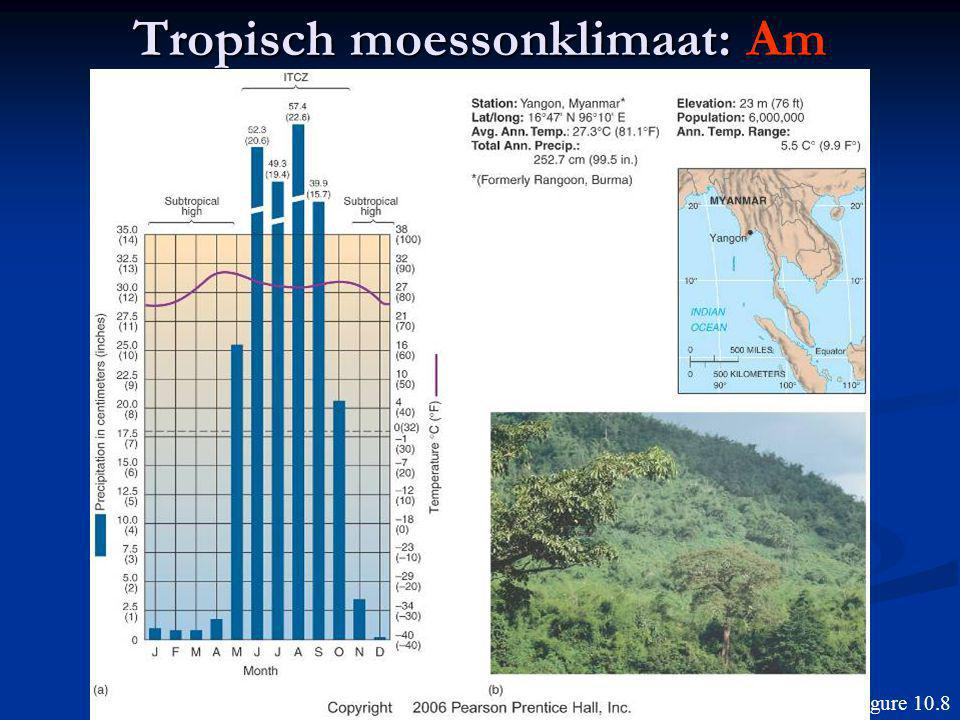Tropisch moessonklimaat: Am