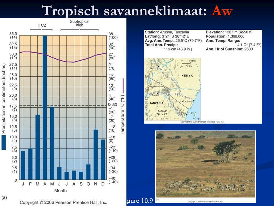 Tropisch savanneklimaat: Aw