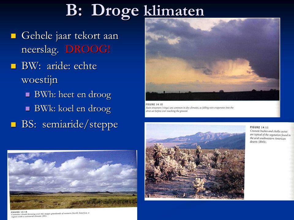 B: Droge klimaten Gehele jaar tekort aan neerslag. DROOG!