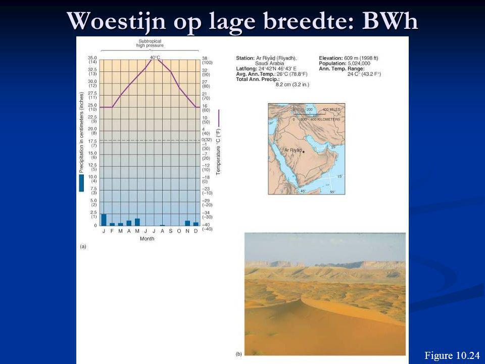 Woestijn op lage breedte: BWh