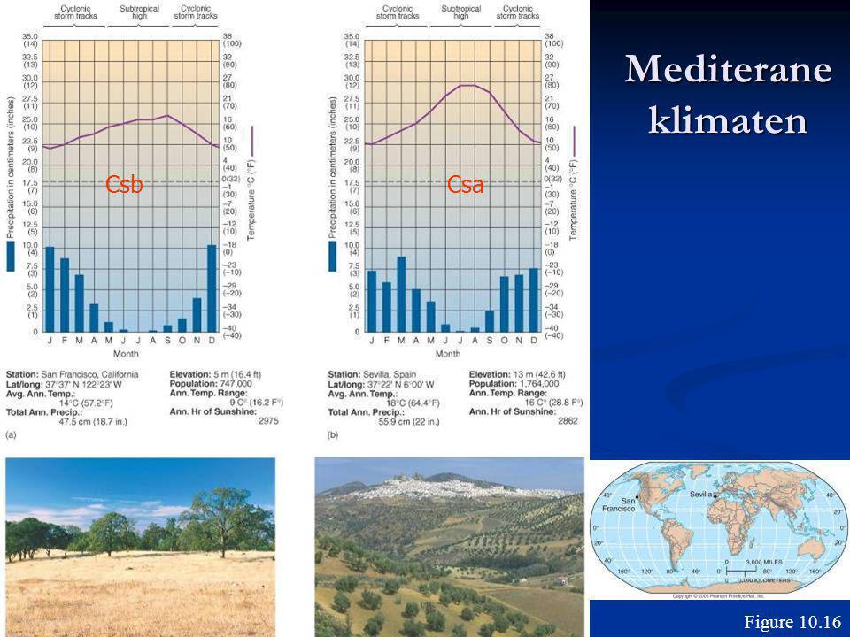 Mediterane klimaten Csb Csa Figure 10.16