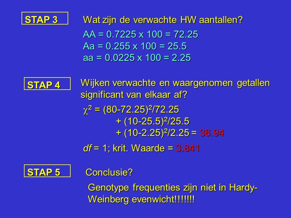 STAP 3 Wat zijn de verwachte HW aantallen AA = 0.7225 x 100 = 72.25. Aa = 0.255 x 100 = 25.5. aa = 0.0225 x 100 = 2.25.