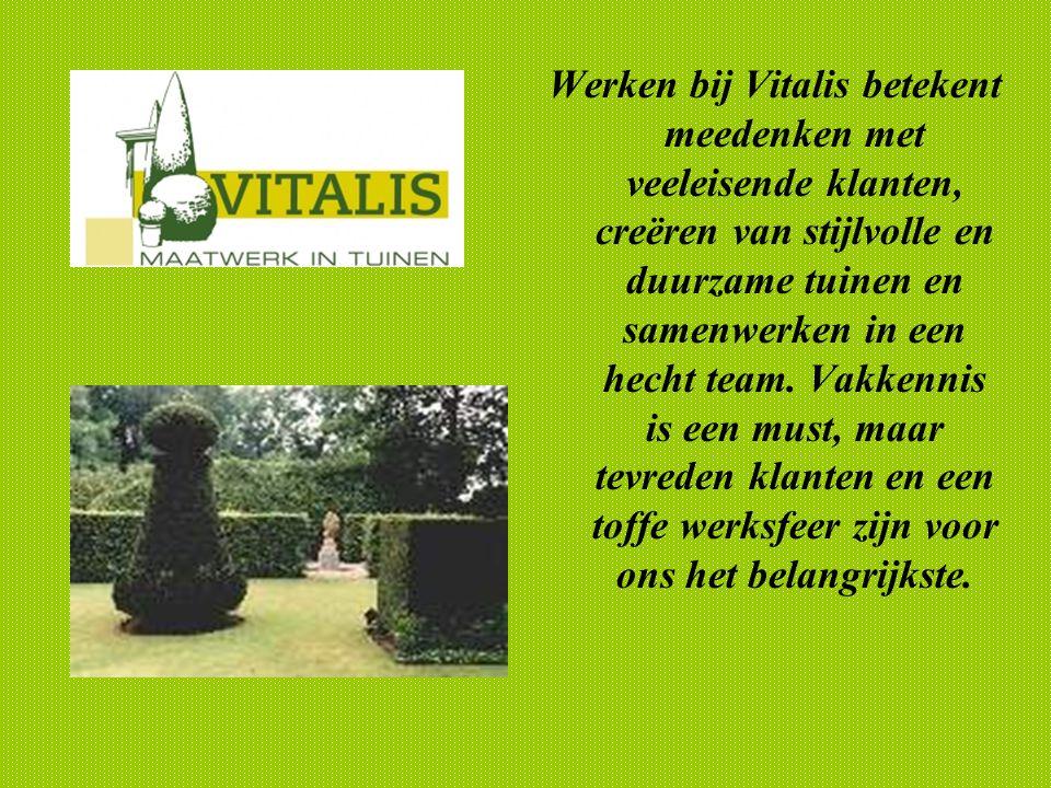 Werken bij Vitalis betekent meedenken met veeleisende klanten, creëren van stijlvolle en duurzame tuinen en samenwerken in een hecht team.