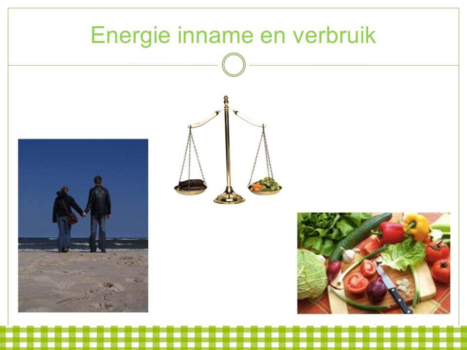 Energie inname en verbruik