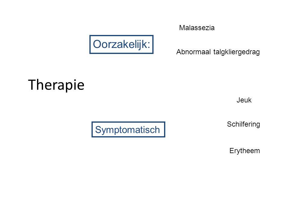 Therapie Oorzakelijk: Symptomatisch Malassezia
