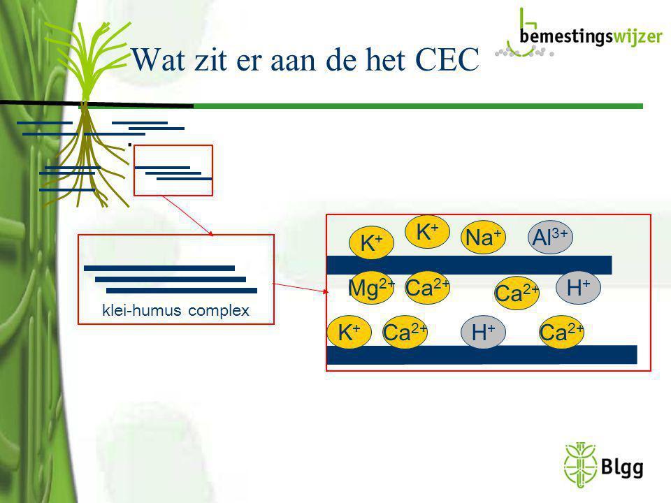 Wat zit er aan de het CEC . K+ Ca2+ Mg2+ H+ Na+ Al3+
