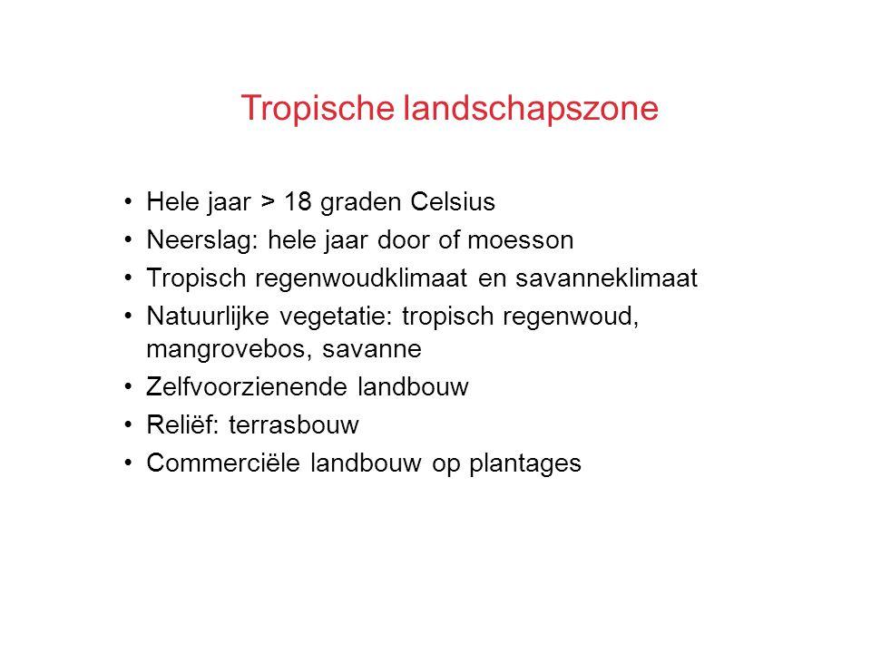 Tropische landschapszone