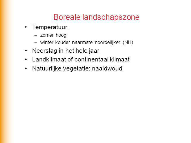 Boreale landschapszone